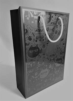 Ламинированные пакеты с логотипом, фото 2