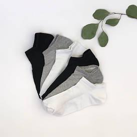 Женские носки сетка