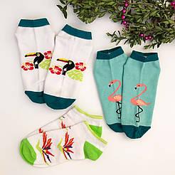 Короткие женские демисезонные носки  V&T socks с рисунками