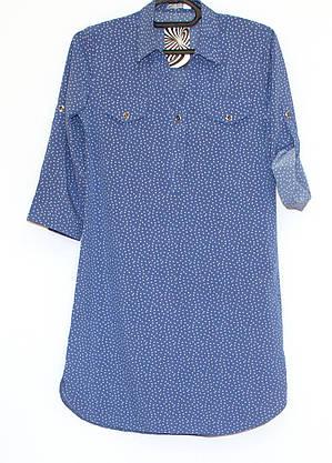 Сукня сорочка в горошок рукав 3/4(44,48), фото 3