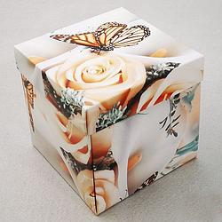 Упаковка для гуртки картонна з кришкою (метелики)