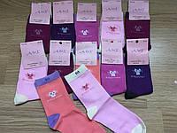 Носки девочка, носки Подросток Для девочек «Кошечка»