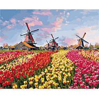 Картина для рисования по номерам Красочные тюльпаны Голандии ТМ Идейка КНО2224
