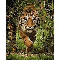 Картина для рисования по номерам Король джунглей ТМ Идейка 40 х 50 КН04043