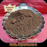 Какао порошок GT78 Cargill Gerkens, Premium 20-22% алкалізований Нідерланди, 1 кг, фото 5