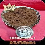 Какао порошок GT78 Cargill Gerkens, Premium 20-22% алкалізований Нідерланди, 1 кг, фото 2