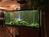 Диффузор с подсветкой для аэрации воды в аквариуме, водоеме, фото 7