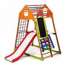 Детский спортивный комплекс KindWood Color Plus 3  SportBaby, фото 3