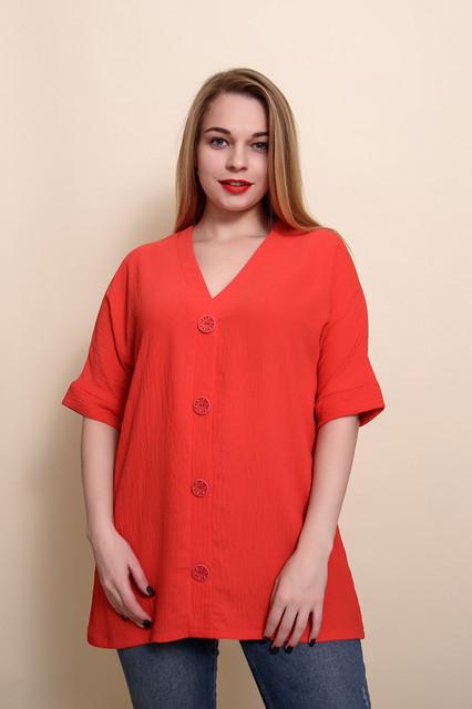Жіночі футболки, туніки, блузи великого розміру
