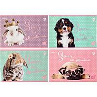 Тетрадь для рисования Kite Studio Pets SP20-241, 12 листов