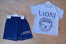 Костюм для мальчика, 1-4 года, трикотаж, Lion, серый