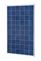 Сонячна панель British Solar 290Р полі