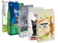 Какая разница между кормами для кошек премиум и эконом класса