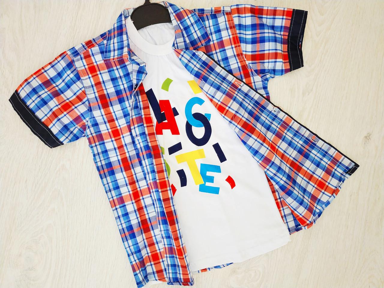 Рубашка + футболка для мальчика, Турция, Babexi,  арт. 38561, 122-128 см