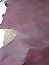 Кожа  Крэзи Хорс(Crazy Horse) БОРДО 1,4-1,6 мм
