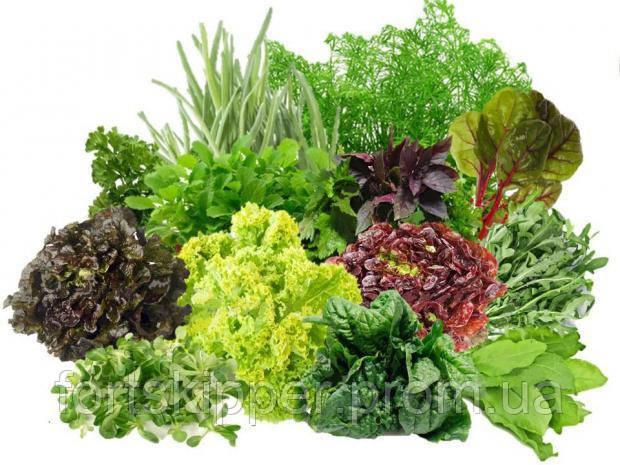 Бу моечная машина салатов KRONEN до 1750 кг/ч