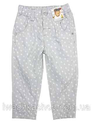 Летние хлопковые штаны, брюки с бабочками на девочек 9 - 12 месяцев, р. 80, Ergee / KIK