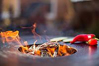 Мангалы для кейтеринга – уличные гриль барбекю на дровах