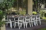 Набор садовой мебели Harmony Fiesta Set 10 Light Grey ( серый ) ( Allibert by Keter ), фото 3