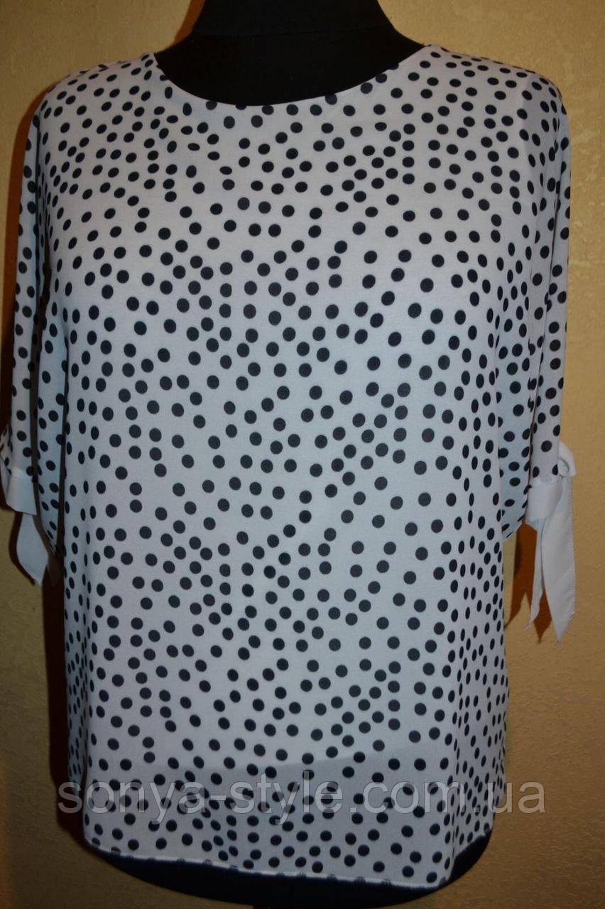Женская блузка   из шифона с горохом    больших размеров