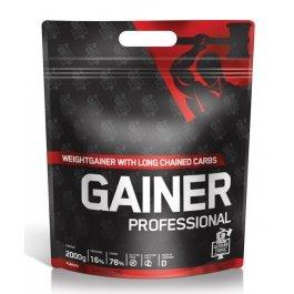 IronMaxx Gainer Professional 2000g