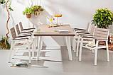 Набір садових меблів Harmony Fiesta Set 6 Cappuccino Brown ( капучіно коричневий ) ( Allibert by Keter ), фото 2