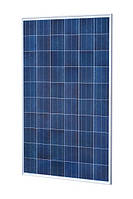 Сонячна панель SUNTECH STP 290-20 WFH полі