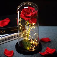 Вечная роза в колбе с LED подсветкой