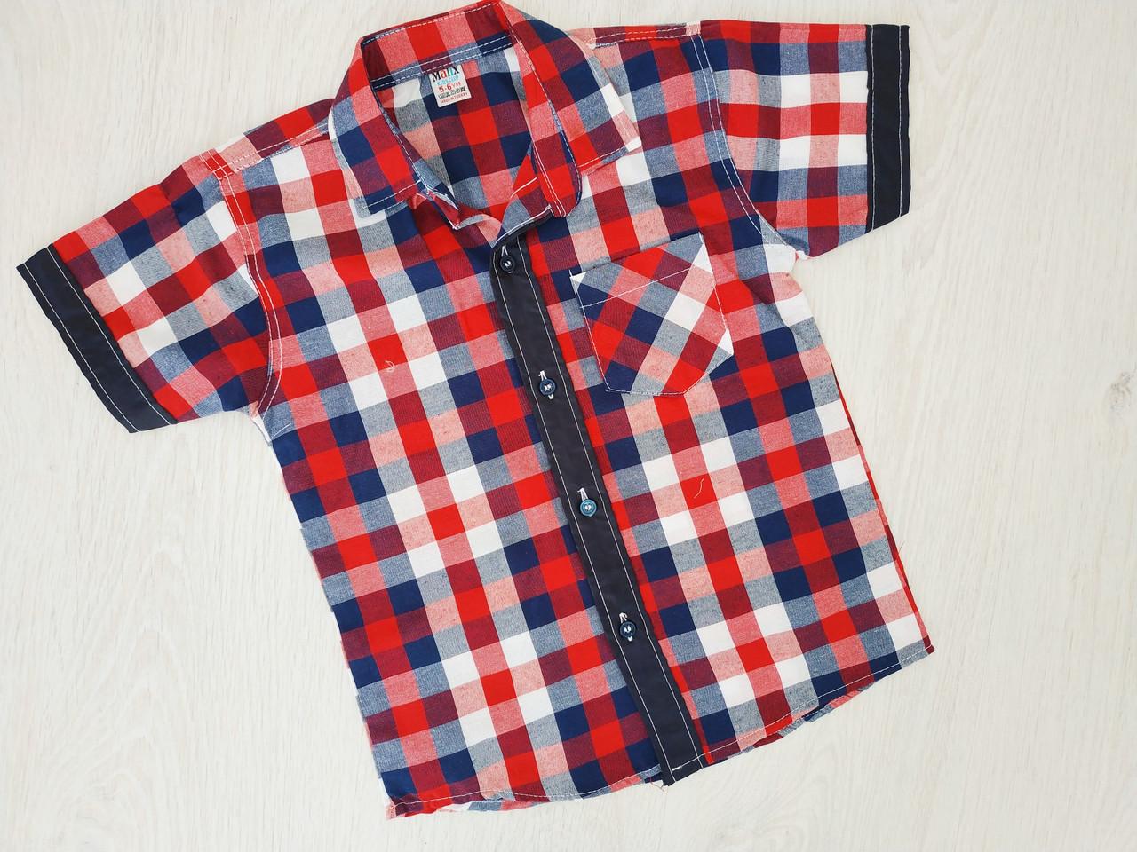 Рубашка для мальчика, Турция, Babexi, арт. 38591