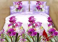 Постельное белье 2-спальные комплекты Ранфорс R1827