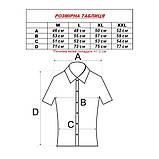 Сорочка чоловіча (приталена) з коротким рукавом Bagarda BG 6535 NAVY 93% бавовна 7% еластан M(Р), фото 4