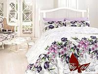 Постельное белье 2-спальные комплекты Ранфорс R208