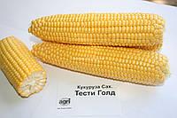 Семена сахарной кукурузы Тести голд F1 (5000 семян) Agri Saaten