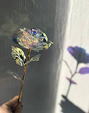 Светящаяся Роза, 24 K покрытая фольгой, Розовая / XY19-52- Новинка, фото 3