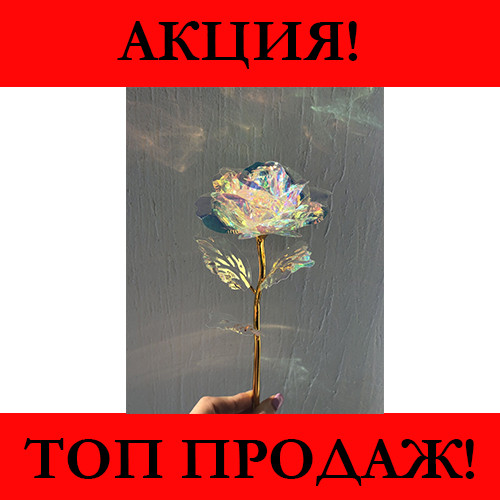Светящаяся Роза, 24 K покрытая фольгой, Розовая / XY19-52- Новинка