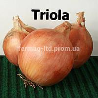 Семена лука Триола (250 000 семян)