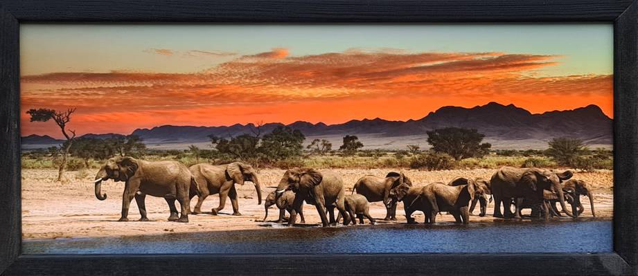 "Фотокартина в деревянной раме ""Elephants 2"", 20х50 см, фото 2"