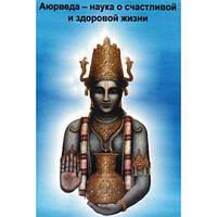 Торсунов Аюрведа - наука о здоровой и счастливой жизни