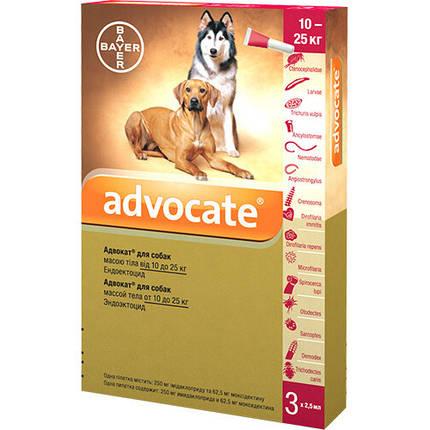 Капли от блох, отодектоза, саркоптоза Bayer Advocate для собак 10-25 кг, цена за 1 пипетку, фото 2