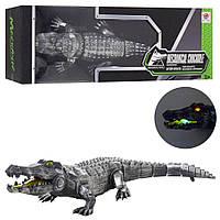 Животное rрокодил FK507