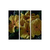 "Модульная картина на холсте ""Цветы"" 700х250х3, фото 1"