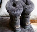 Женские зимние сапоги (с мехом), фото 4