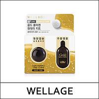 Коллагеновая капсула с золотом Wellage Gold Collagen One Day Kit