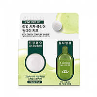 Капсула с центеллой Wellage Real Cica Clear One Day Kit