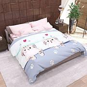 Комплект постельного белья Руно полуторный бязь подростковый арт.1.114Г_4142(А+В)_1