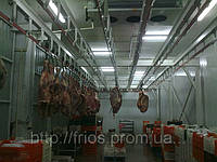 Камеры шоковой заморозки мяса