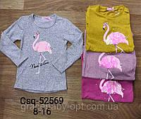 Реглан для девочек оптом, Seagull, 8-16 лет,  № CSQ-52569, фото 1