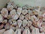 Баранина (ягнятина), фото 2