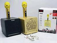Аккумуляторная портативная беспроводная караоке колонка Bluetooth с двумя микрофонами SD - 504