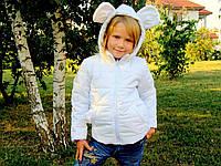 """Куртка детская Микки № 9009.1 """"Mikki""""  New!"""